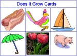 Does It Grow Cards