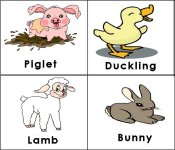 Farm Animals (babies)