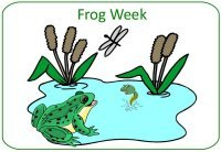 June Preschool Curriculum - Frog Theme