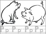 Letter P Pig children learn the letter Pp